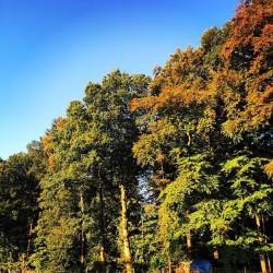 Oktober_Wohlfühlglück (17)